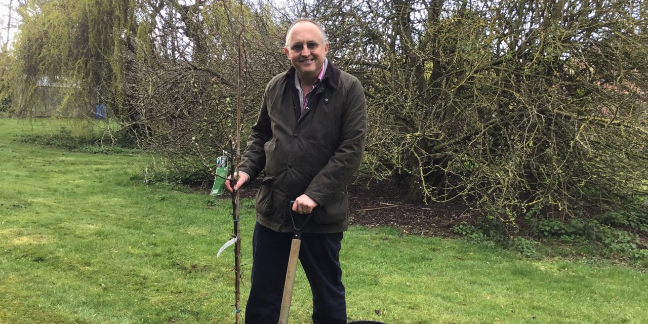 Tree Planting in heckington