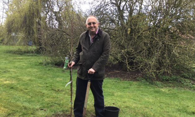 Tree Planting in heckington